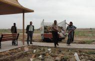 زراعة 400م2 من الثيل الهندي وغرس أكثر من 150 شتلة في كلية الاداب