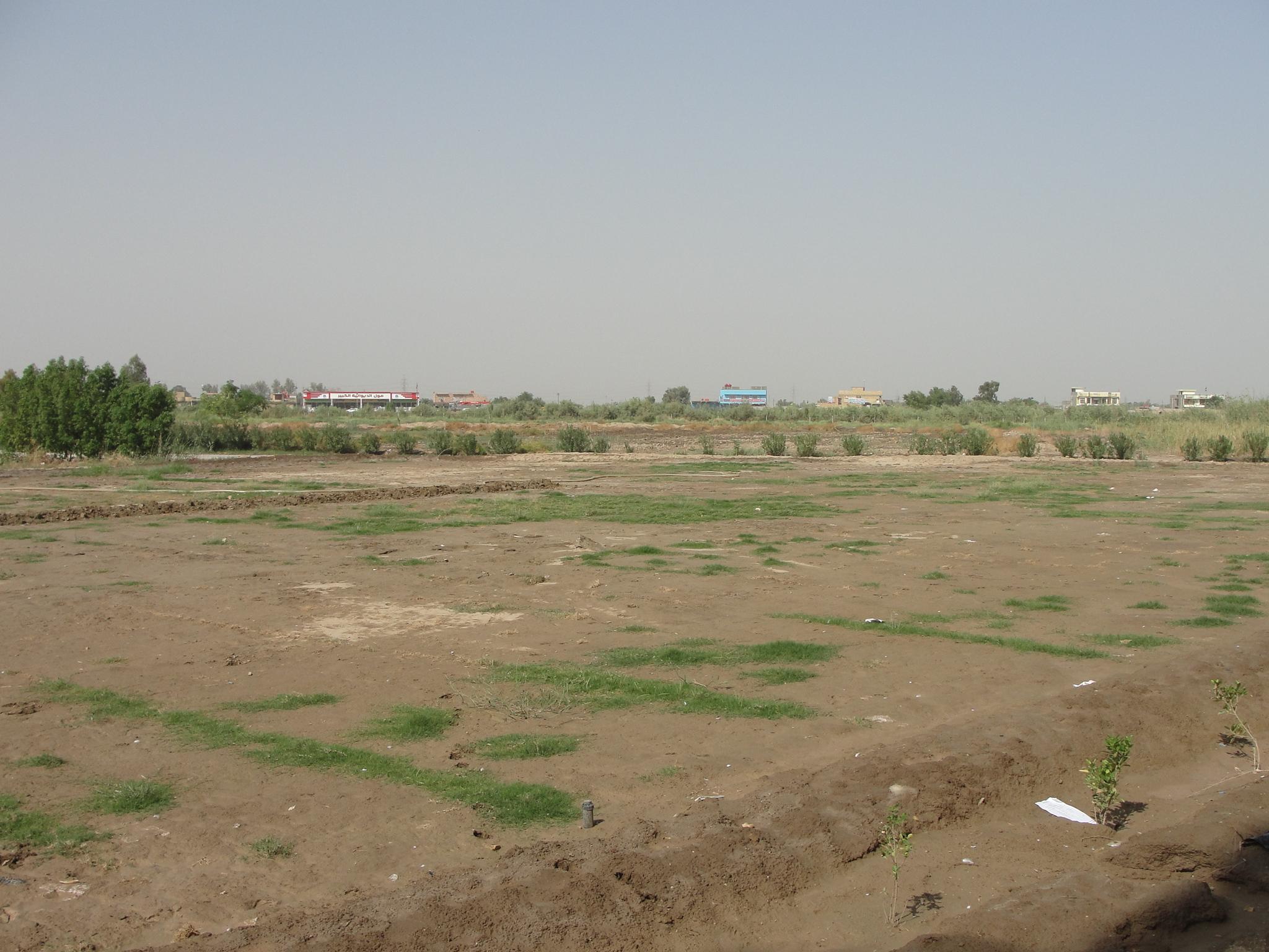 تهيئة وزراعة أكثر من 2800م2 في كلية الآداب بجامعة القادسية