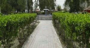 احدى حدائق الكلية