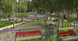 جانب من حدائق الكلية