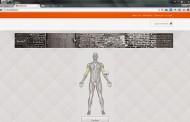 الدليل الشامل في كيفية بناء جسم قوي
