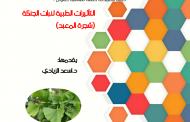 كلية الصيدلة في جامعة القادسية تنظم حلقة نقاشية عن التاثيرات الطبية لنبات الجنكة( شجرة المعبد)