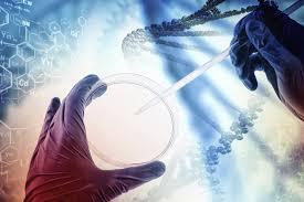 ورشة عمل يقيمها قسم علوم الحياة حول molecular methods used to diagnosis infectious diseases