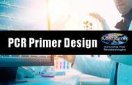 تصميم البادئاتPCR Primer Design:دورة في كلية العلوم