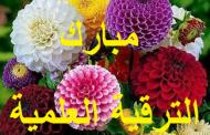 ترقية علمية للمدرس قاسم لفتة بجاي