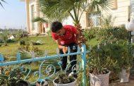 مبادرة تطوعية لصبغ السياج المحيط بحديقة الكلية