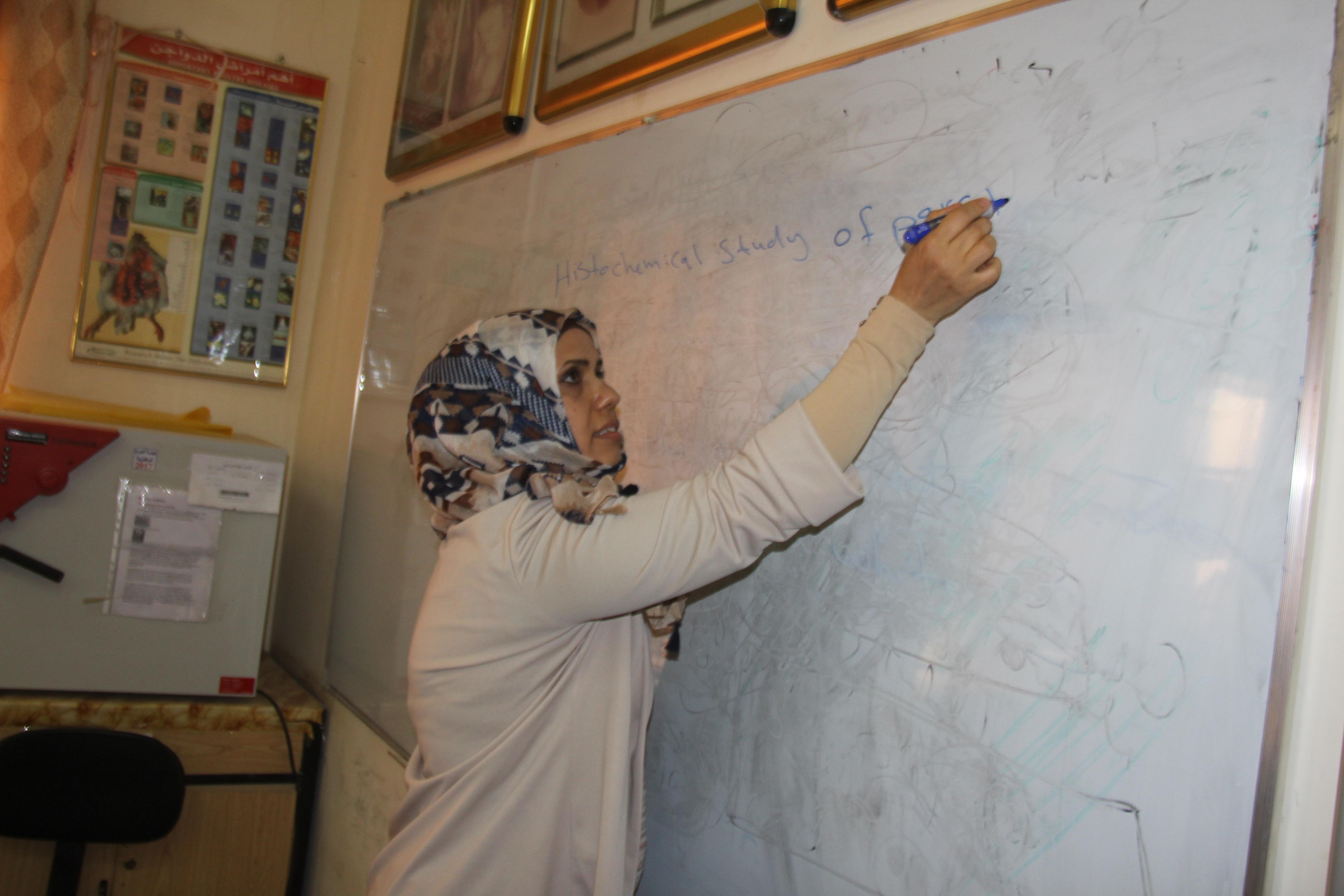 كلية الطب البيطري في جامعة القادسية تقيم حلقة نقاشية عن الآثار السمية للتناول المفرط للبراسيتمول