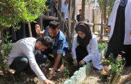 كلية الطب البيطري في جامعة القادسية تطلق حملة تطوعية لتشجير الكلية