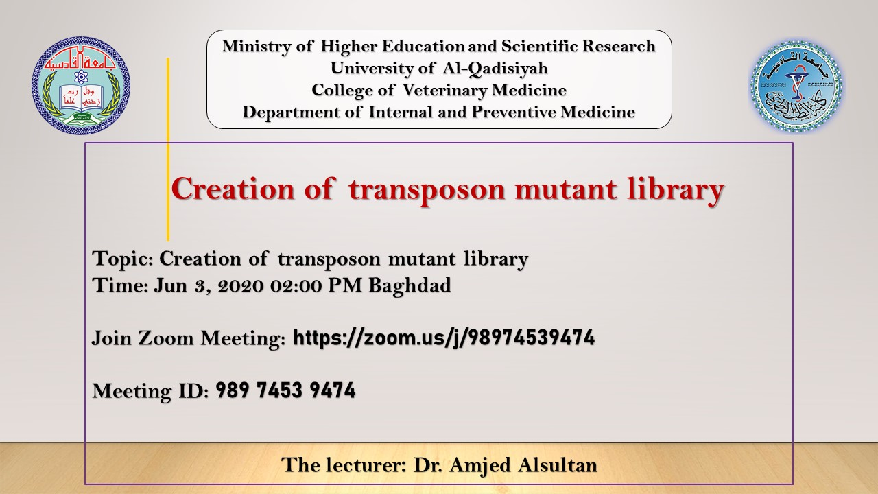 Creation of transposon mutant library